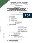 Estructura Del Informe Investigacion Pet