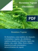 hormoniosvegetais