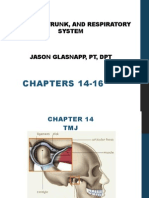 Kines Anatomy Ch. 14-16
