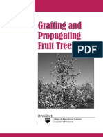 Grafting Fruit Trees