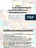 Topic 3 - Brundtland