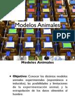 Tema+1.+Modelos+Animales-1