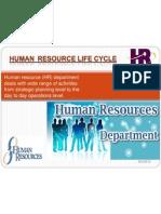 Human Resource (HR)