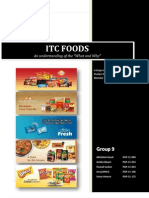PM Report_ITC Foods_Group 9