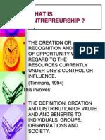 1a Perspectives on Entrepreneurship