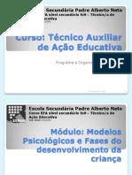 Módulo 1 - Aula 1.2.3. Apresentação - Curso Técnico Auxiliar de Infância