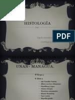 Histología, hueso y cartilago