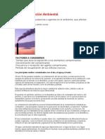 La Contaminación Ambiental y impacto