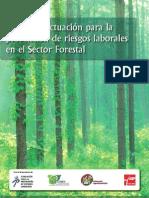 Pautas de actuación para la prevención de riesgos laborales en el Sector Forestal