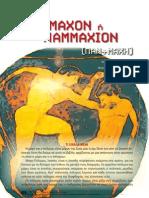 200904_pammaxon