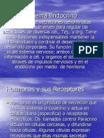 Sistema_Endocrino[1]