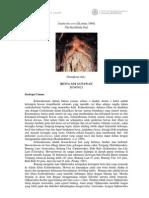 Biologi Laut 2012 B1J009023 Betta Ady Gunawan Amphiodia Urtica