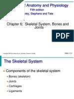 Ch6 Skeletal System