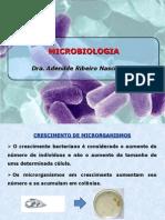 CRESCIMENTO MICROBIANO(2)