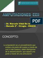 amputacionesok-100506170525-phpapp01