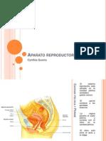 aparatoreproductorfemenino-120419154552-phpapp01