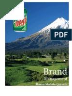 52497292 Strategic Brand Management Kevin Keller Mountain Dew Case Analysis