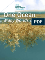 One Ocean Many Worlds of Life