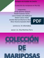 Base de Datos Coleccion de Mariposas 100728154832 Phpapp01