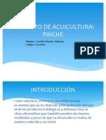 PROYECTO DE ACUICULTURA
