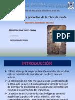 PROYECTO PRODUCTIVO FIBRA DE VICUÑA