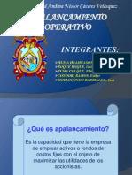 APALANCAMIENTO OPERATIVO (1)