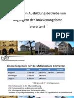 Schüpbach Samuel - Was können Lehrbetriebe von Abgängern der Brückenangebote erwarten