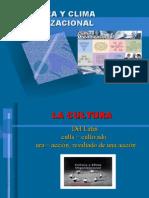 (3.1) Cultura y Clima Organizacional