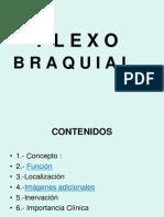 PLEXO_BRAQUIAL_1