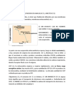 Telmeds.org Documento
