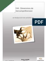 2012_05_16_D9CH4_HOEFFLER_Celine_analyse_activités