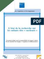 Etat De La Recherche Sur Les Enfants Surdoués (2004)