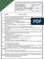 Trabalho de Rec Final l Portuguesa 6 Ano