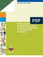 Orientaciones Para Implementacion Prog Pedagogicos Niveles de Transicion