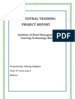 Vihang Gajbhiye Project Report