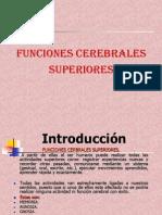 FUNC SUPERIORES-FISIOLOGIAII