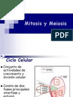 2-Mitosis y Meiosis