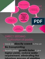 Technology Development in Food Processing Bio f4 2011
