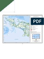 Deforestasi_Papua