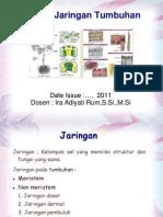 Sistem Jaringan Tumbuhan Agustus 2011. Ppt