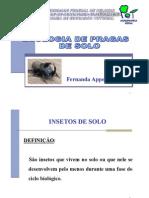 Ecologia.de.pragas.de.solo[1]