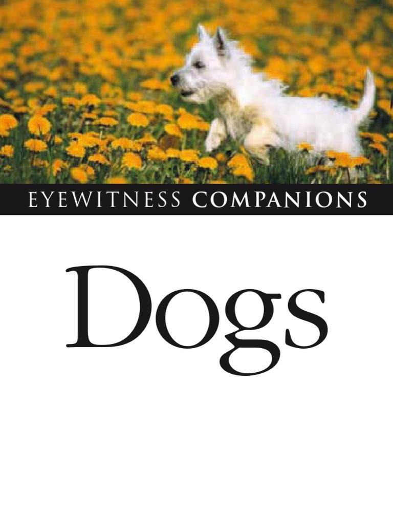 Dr. Bruce Fogle - Dogs   Dog Breeds   Gray Wolf