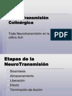 NeuroTransmisi_n_Colin_rgica[1]