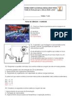 FICHA DE ATIVIDADE II UNIDADE - 7º Ano