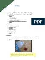 Tamizaje fitoquimico uña de gato