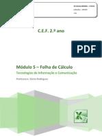 Manual TIC Excel 2010