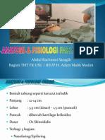 Anatomi & Fisiologi Faring & Laringrevisi