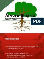 Árvore_Binária