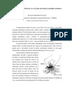 POLINIZAÇÃO ARTIFICIAL NA CULTURA DO MARACUJÁ