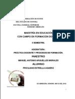 ENSAYO PRACTICA DOCENTE Y PROCESOS DE FORMACIÓN